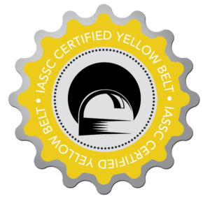 Yellow Belt logo - Lean Six Sigma Training - Thornley Group
